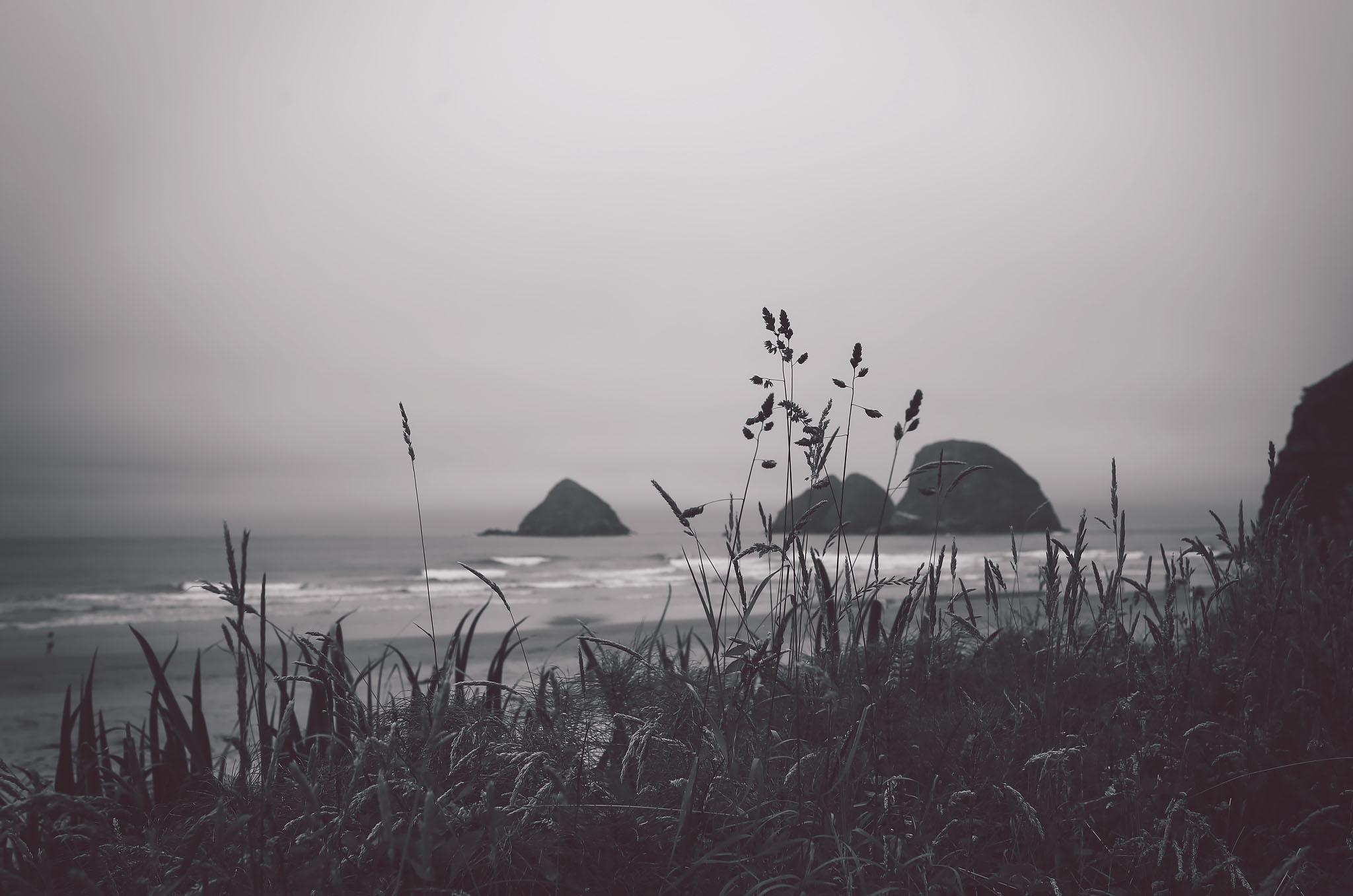 oregon coast, black and white series, jennifer picard photography, travel photography