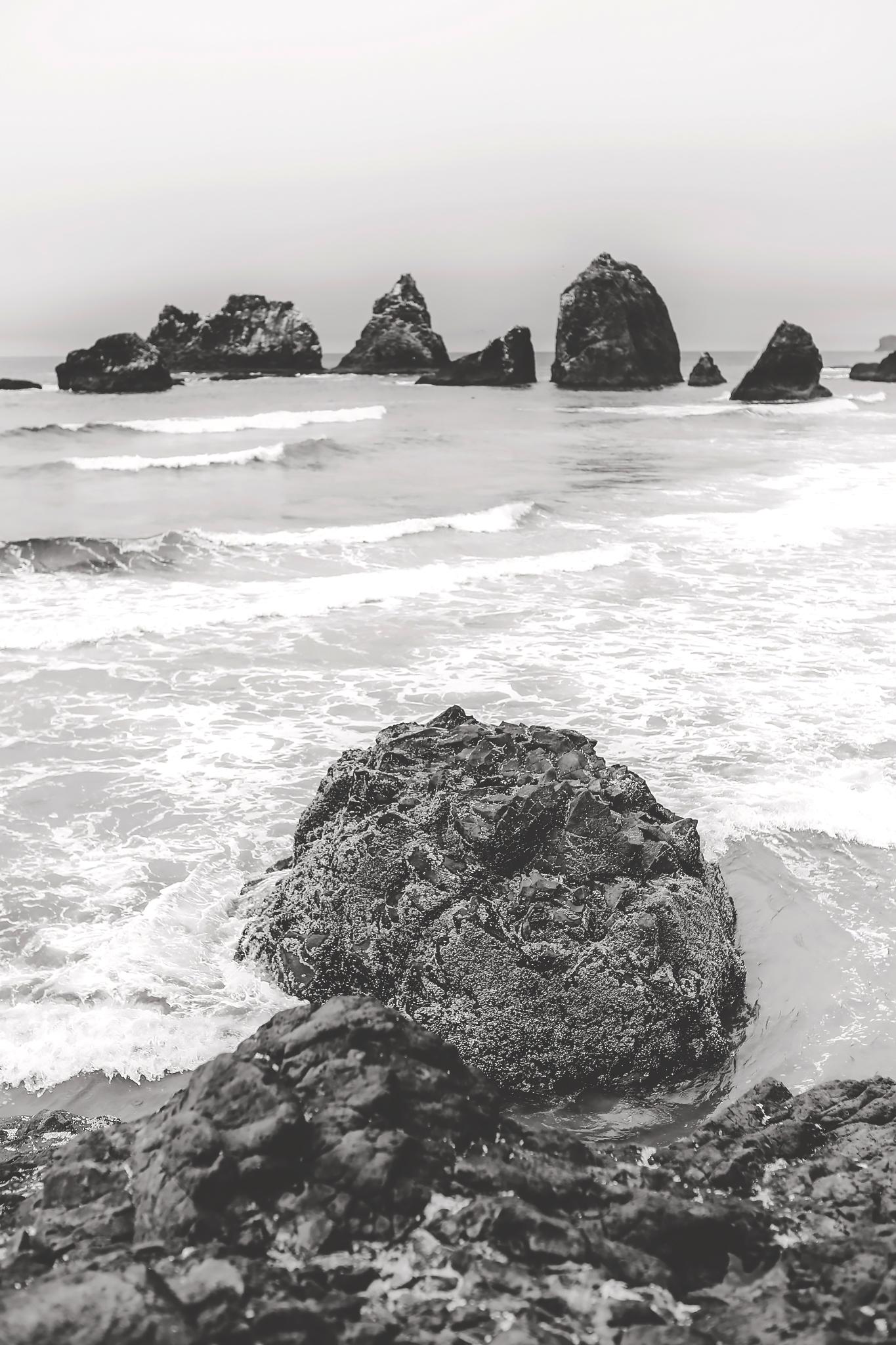 oregon coast, black and white, travel photography, jennifer picard photography