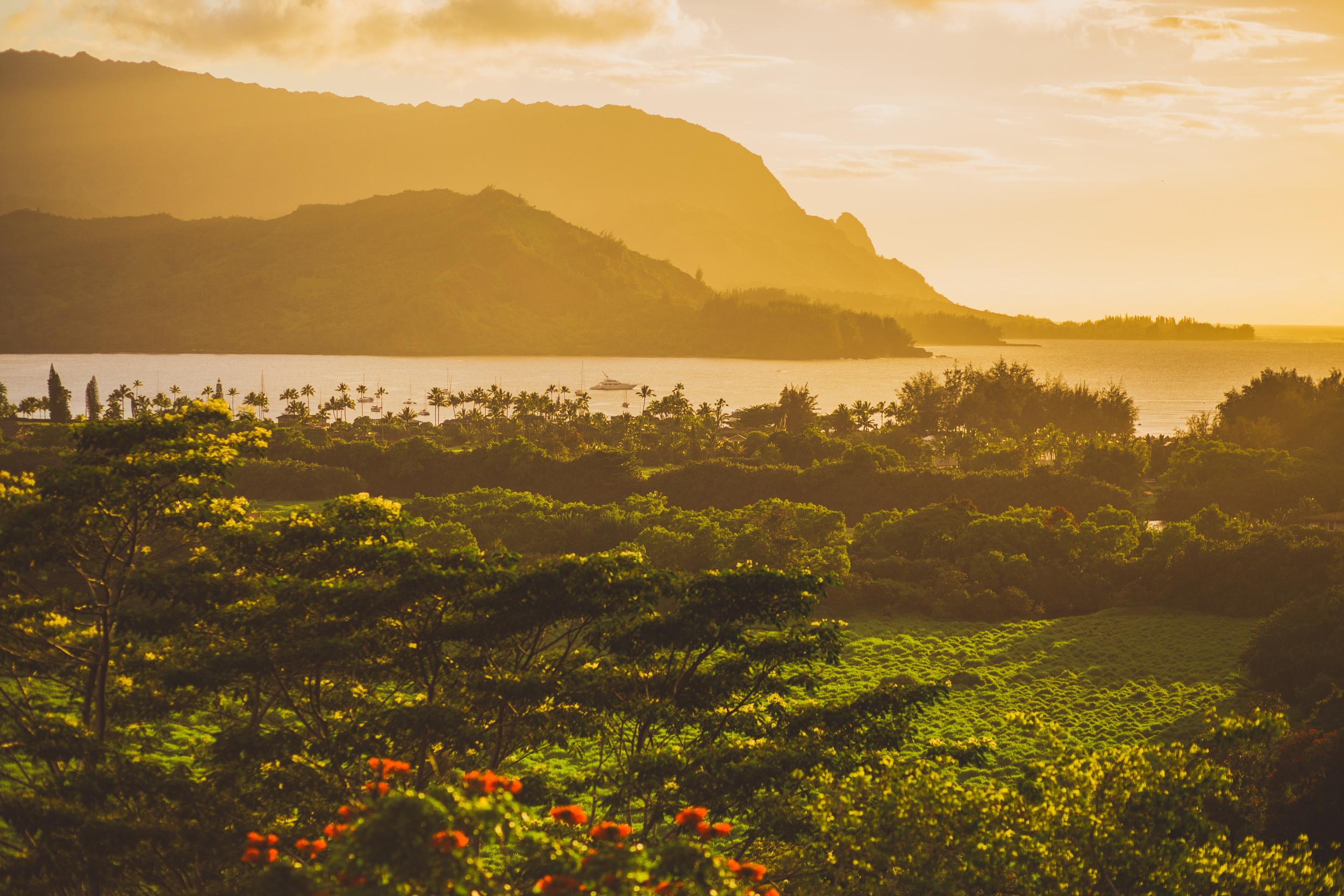 IMG_2780 KAUAI GOLDEN HOUR SUNSET JENNIFER PICARD PHOTOGRAPHY.jpg