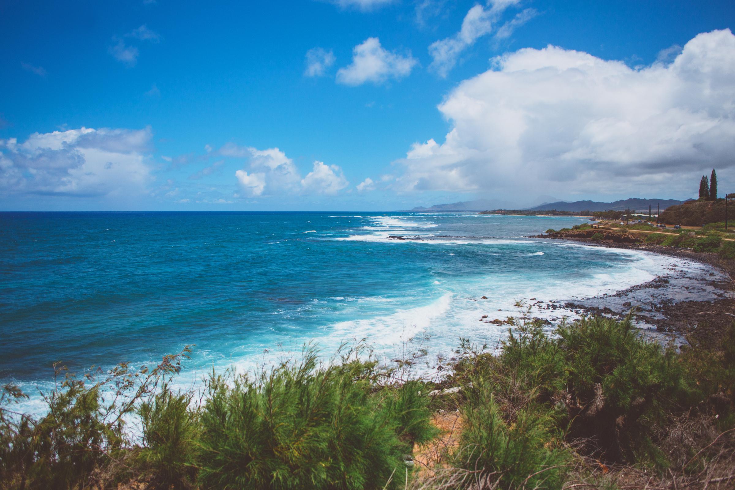 IMG_2207-KAUAI-HAWAII-JENNIFER-PICARD-PHOTOGRAPHY.jpg