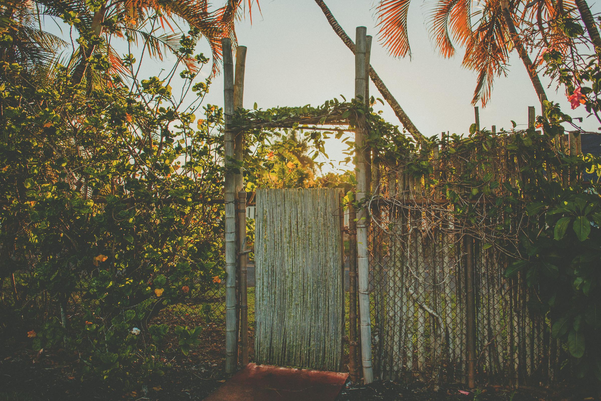 IMG_2250-KAUAI-HAWAII-JENNIFER-PICARD-PHOTOGRAPHY.jpg
