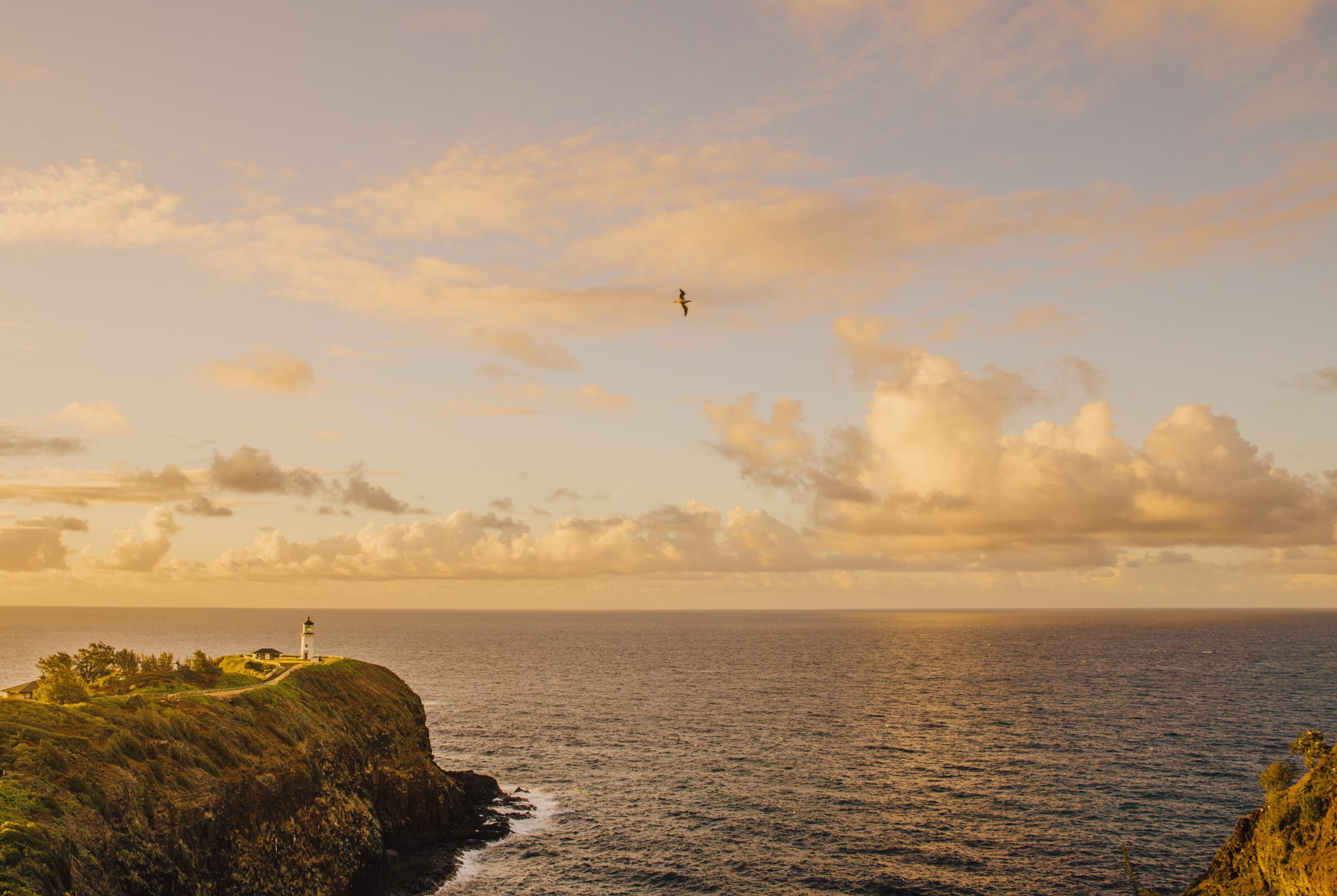 IMG_2260-WEB-KAUAI-HAWAII-SUNSET-JENNIFER-PICARD-PHOTOGRAPHY.jpg