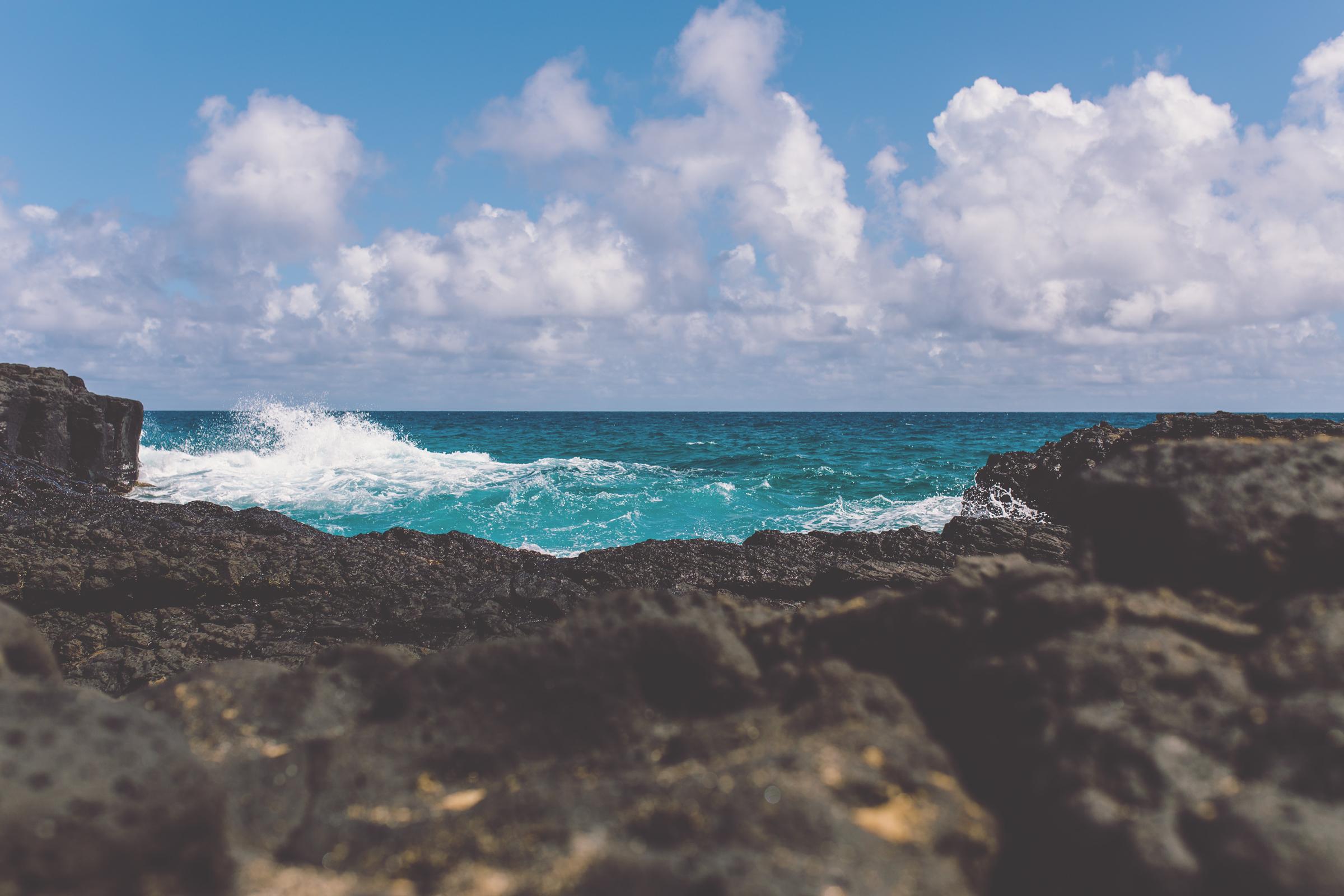 IMG_2457--KAUAI-HAWAII-JENNIFER-PICARD-PHOTOGRAPHY.jpg
