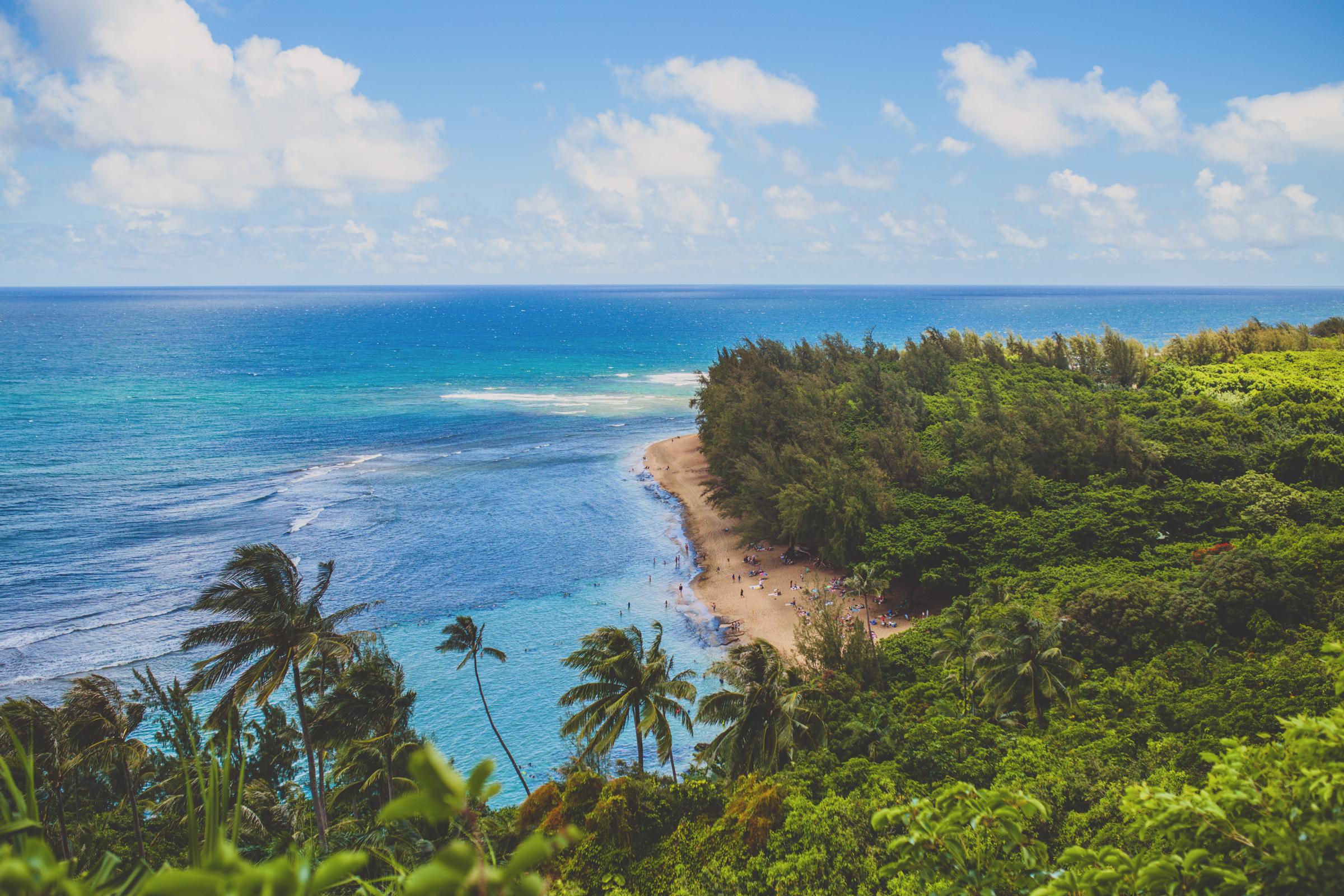 IMG_2556-KAUAI-HAWAII-JENNIFER-PICARD-PHOTOGRAPHY.jpg