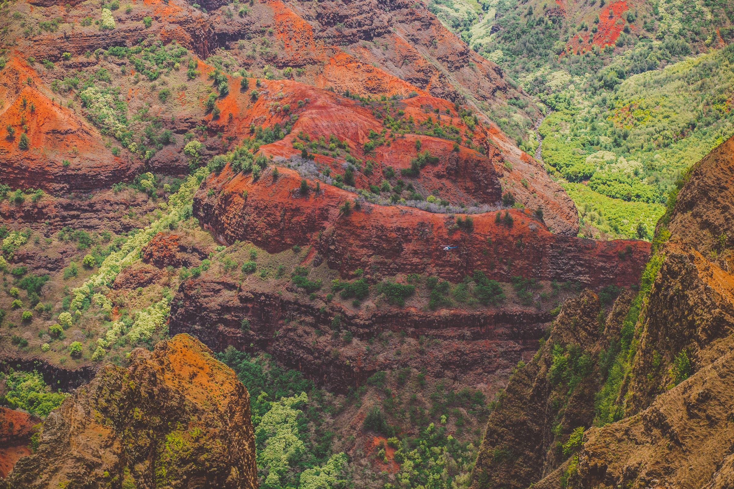IMG_2634--KAUAI-HAWAII-JENNIFER-PICARD-PHOTOGRAPHY.jpg