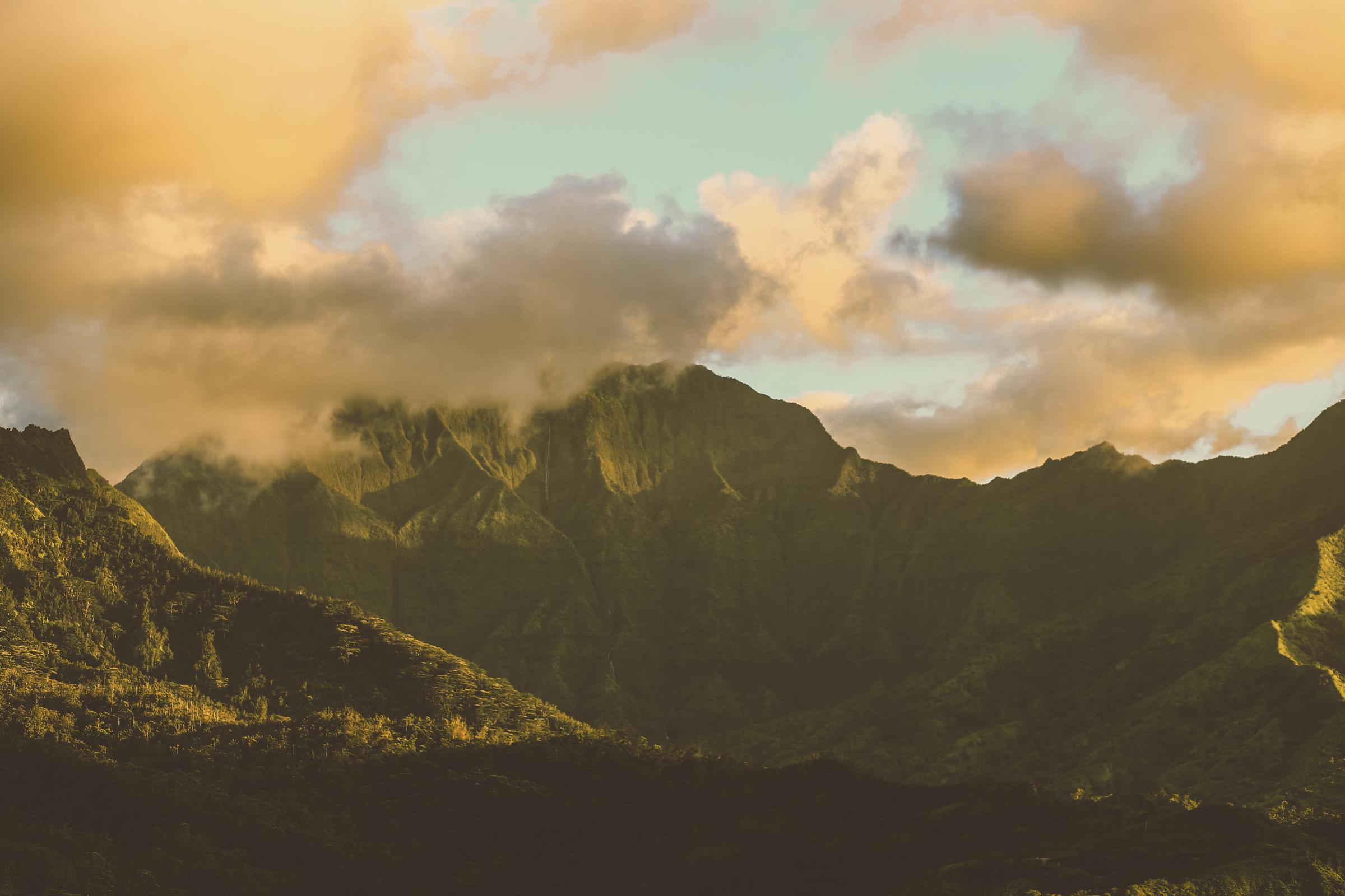 IMG_2764--KAUAI-HAWAII-JENNIFER-PICARD-PHOTOGRAPHY.jpg