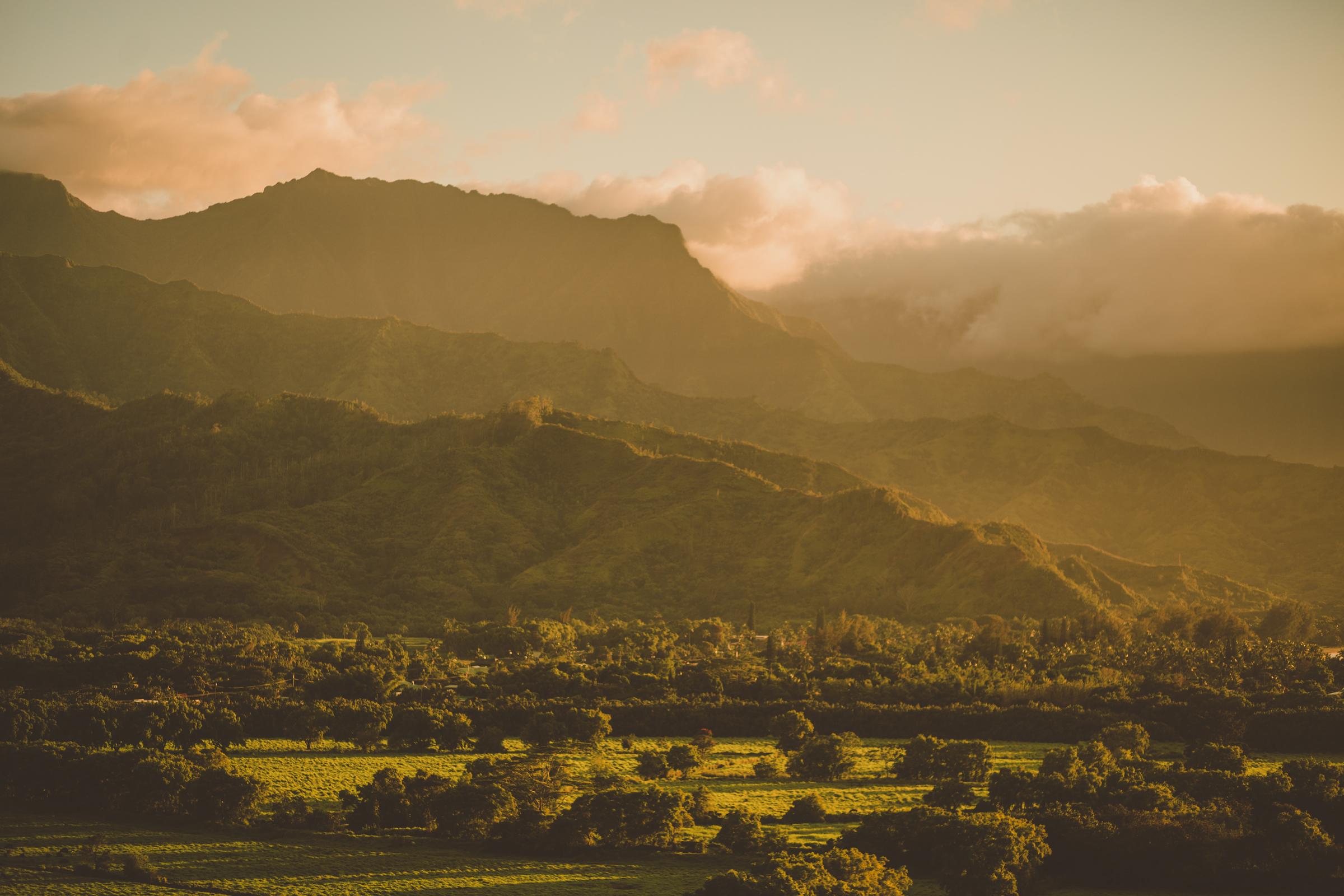 IMG_2788--KAUAI-HAWAII-JENNIFER-PICARD-PHOTOGRAPHY.jpg
