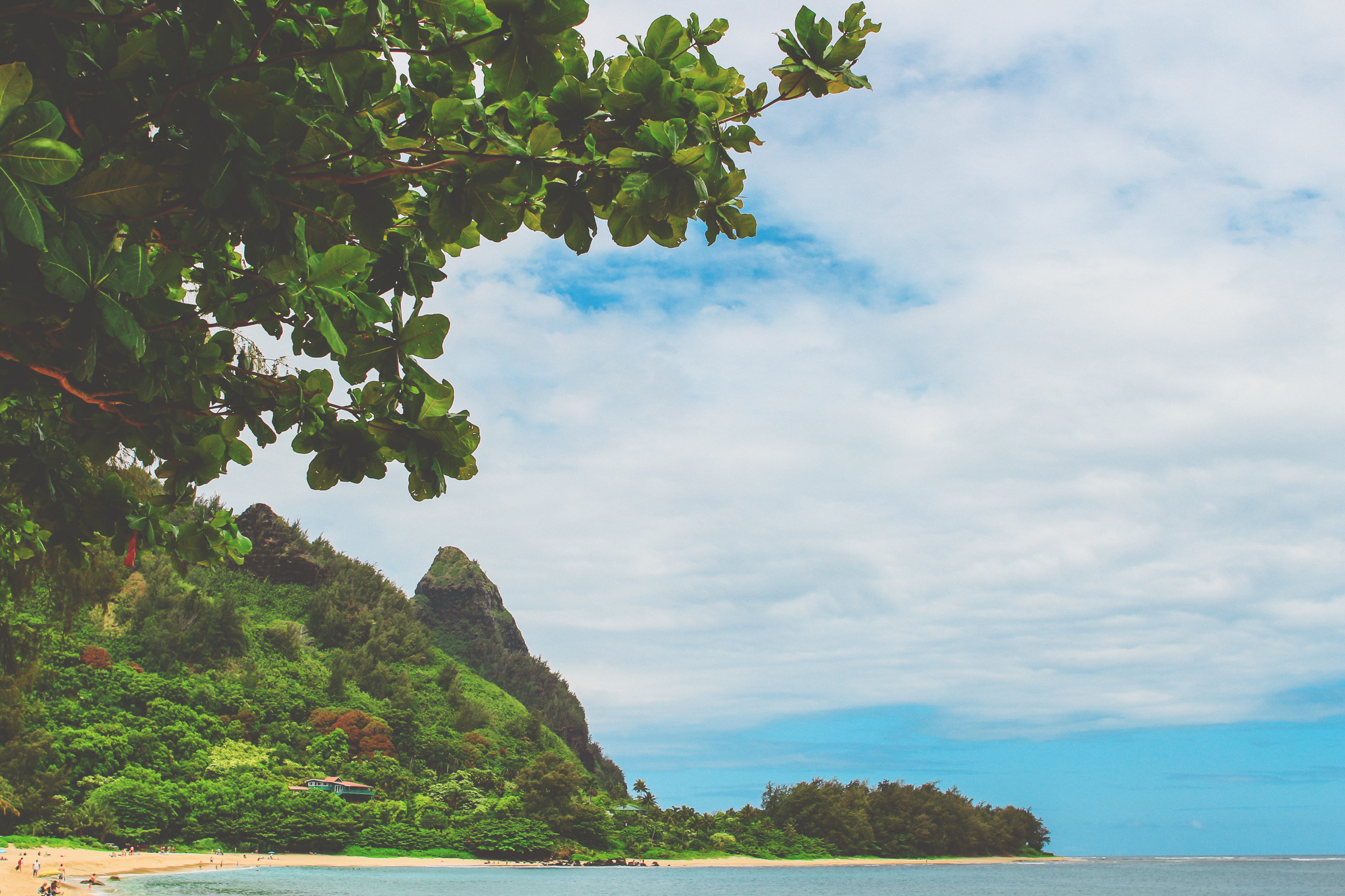 IMG_0170--KAUAI-HAWAII-JENNIFER-PICARD-PHOTOGRAPHY.jpg
