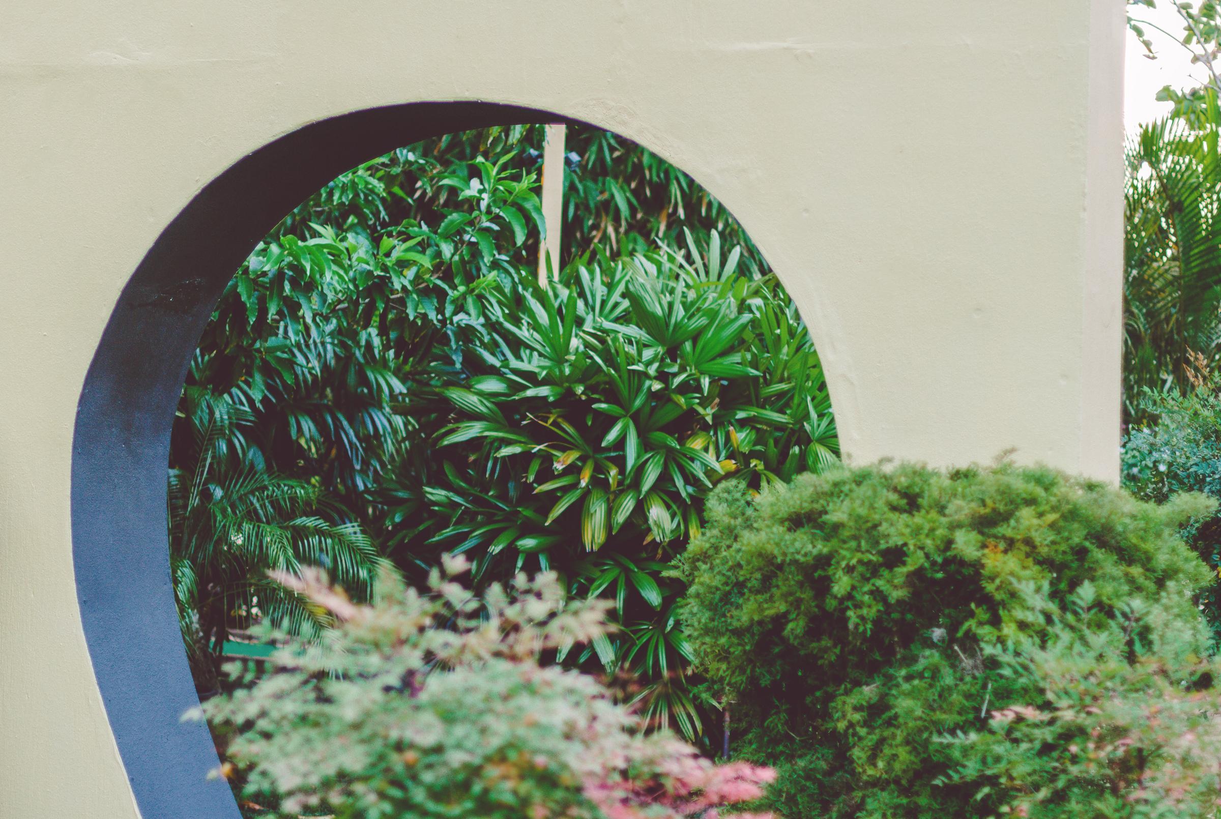 IMG_0297--KAUAI-HAWAII-JENNIFER-PICARD-PHOTOGRAPHY.jpg
