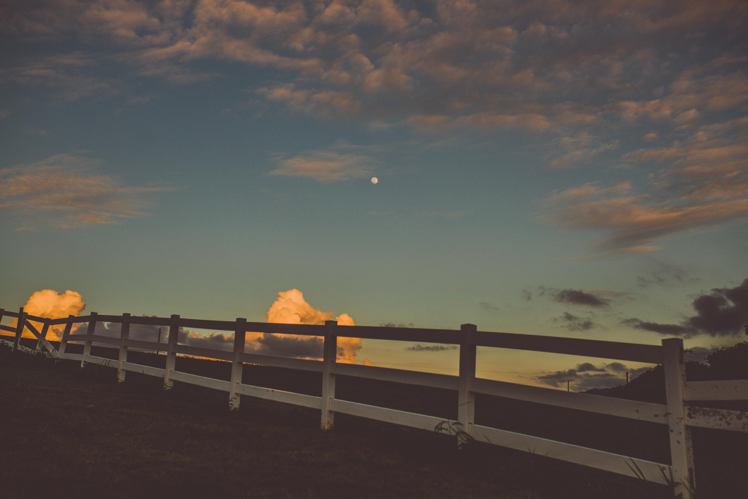 IMG_3108--KAUAI-HAWAII-JENNIFER-PICARD-PHOTOGRAPHY.jpg