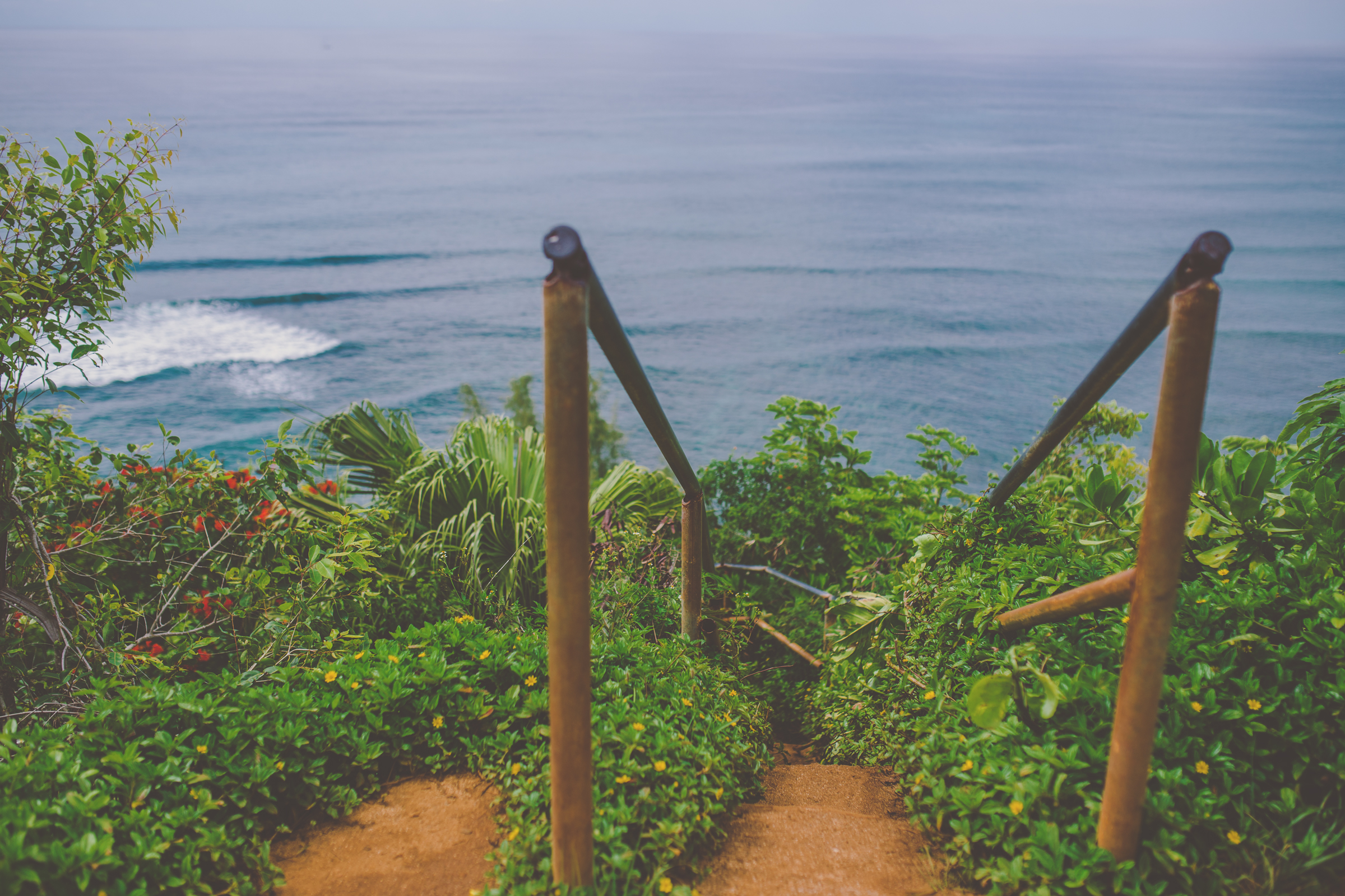 IMG_3341--KAUAI-HAWAII-JENNIFER-PICARD-PHOTOGRAPHY.jpg