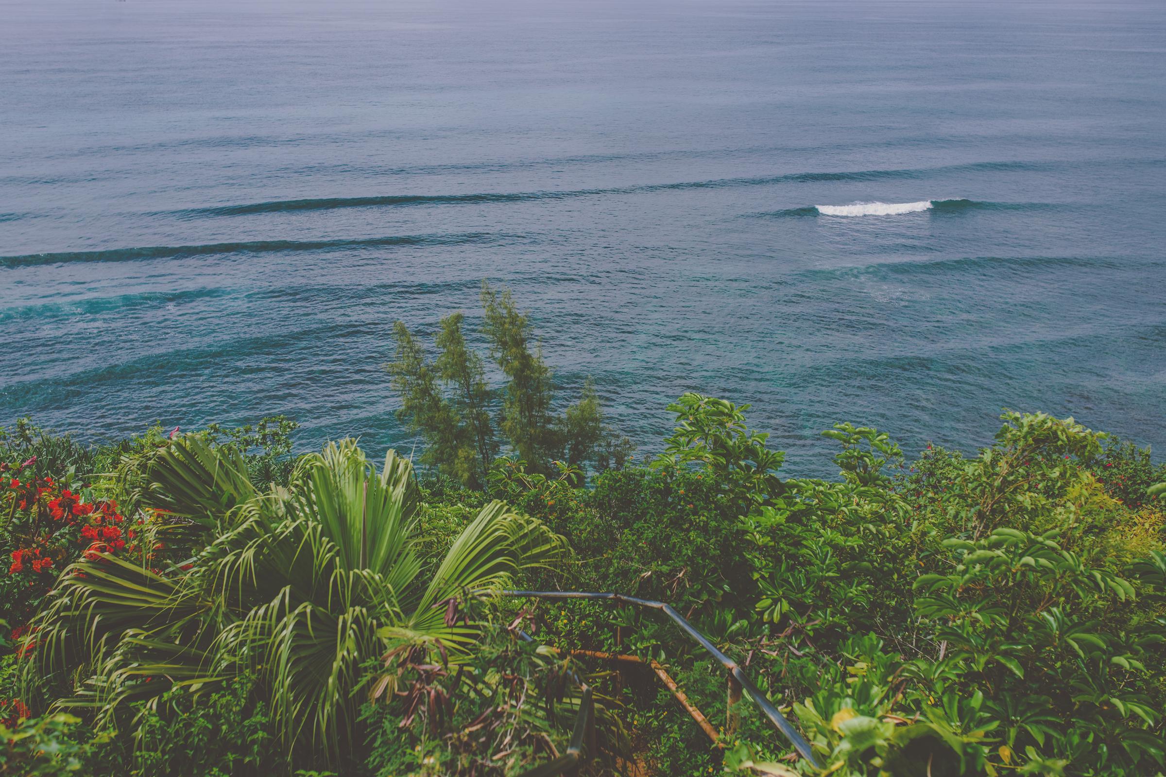 IMG_3351--KAUAI-HAWAII-JENNIFER-PICARD-PHOTOGRAPHY.jpg
