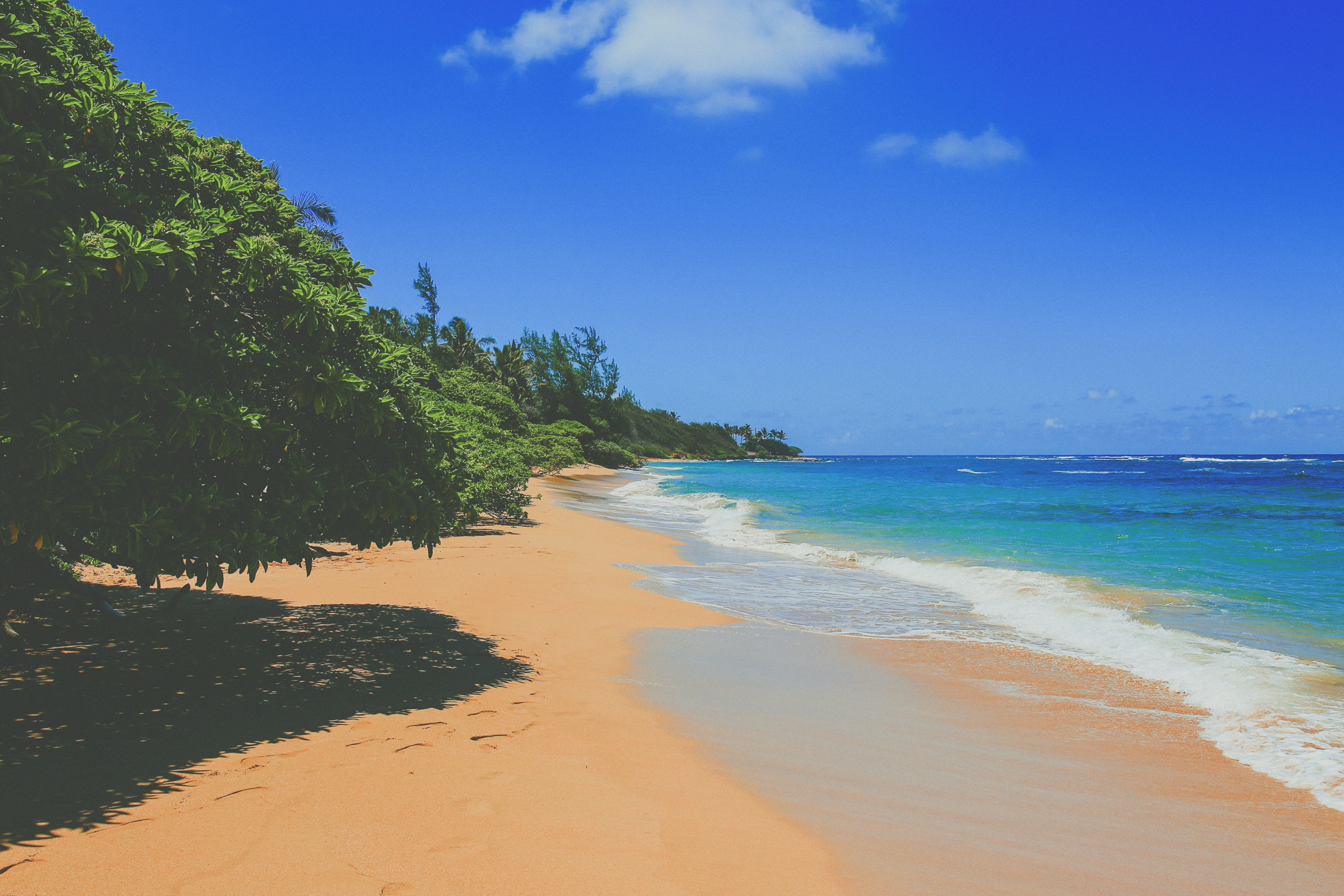 IMG_2982--KAUAI-HAWAII-JENNIFER-PICARD-PHOTOGRAPHY.jpg