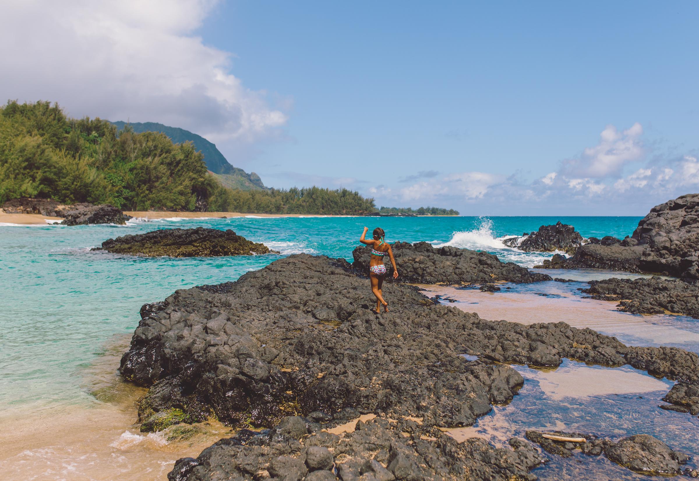 IMG_2465--KAUAI-HAWAII-JENNIFER-PICARD-PHOTOGRAPHY.jpg