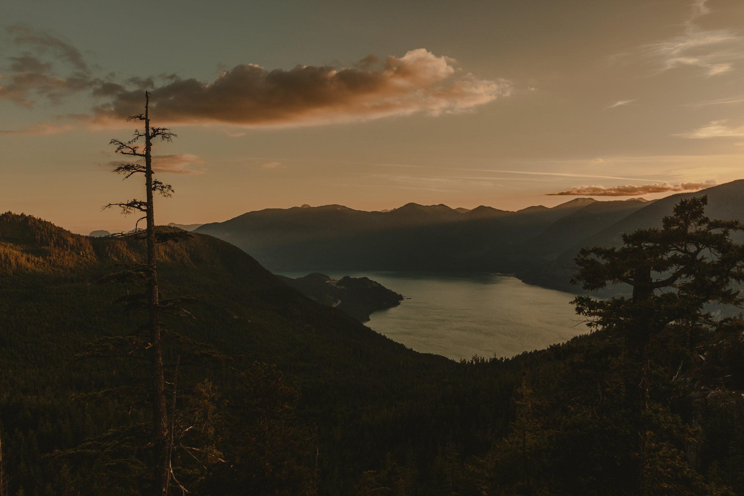 Squamish Wedding Photographer - Sea to Sky Gondola Wedding Photos -  Vancouver Wedding Photographer & Videographer - Sunshine Coast Wedding Photos - Sunshine Coast Wedding Photographer - Jennifer Picard Photography - IMG_5268.jpg