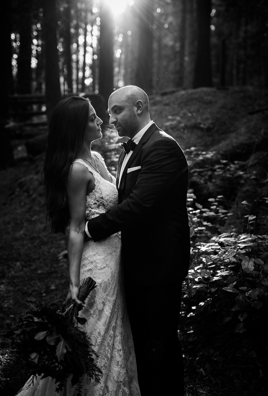 Day After Wedding Photos - Sunshine Coast Wedding Photos - Sunset Wedding Photos - Vancouver Wedding Photographer & Videographer - Sunshine Coast Wedding Photos - Sunshine Coast Wedding Photographer - Jennifer Picard Photography - 1A5A7562.jpg