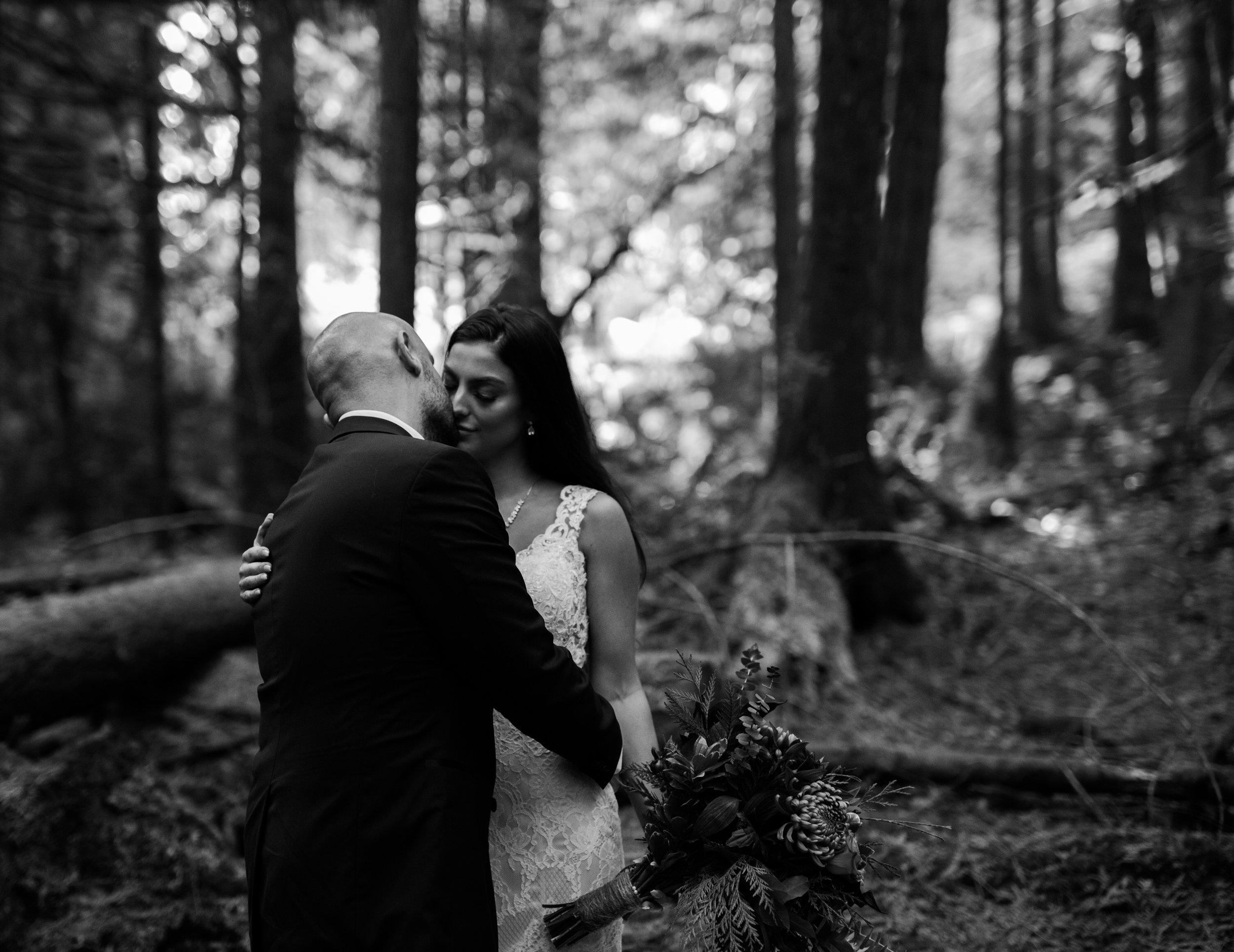 Day After Wedding Photos - Sunshine Coast Wedding Photos - Sunset Wedding Photos - Vancouver Wedding Photographer & Videographer - Sunshine Coast Wedding Photos - Sunshine Coast Wedding Photographer - Jennifer Picard Photography - 1A5A8293.jpg