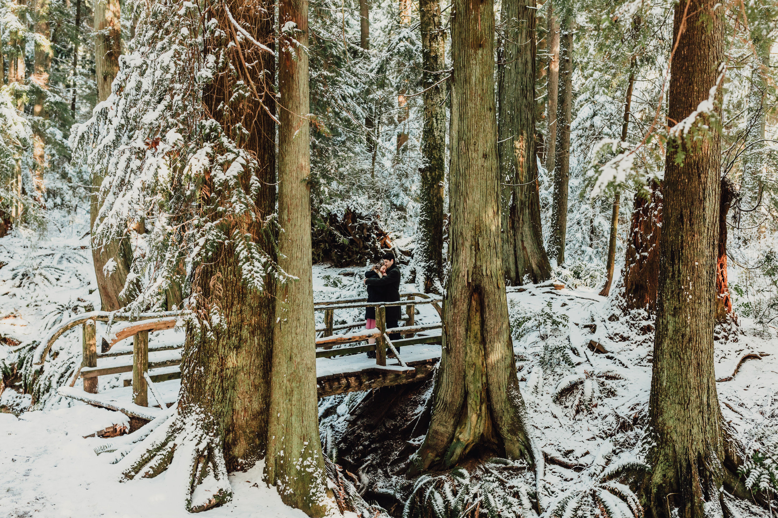 Snowy Engagement Photos - Gibsons Engagement Photos - Sunshine Coast Engagement Photos - Vancouver Wedding Photographer and Videographer - Jennifer Picard Photography062.JPG