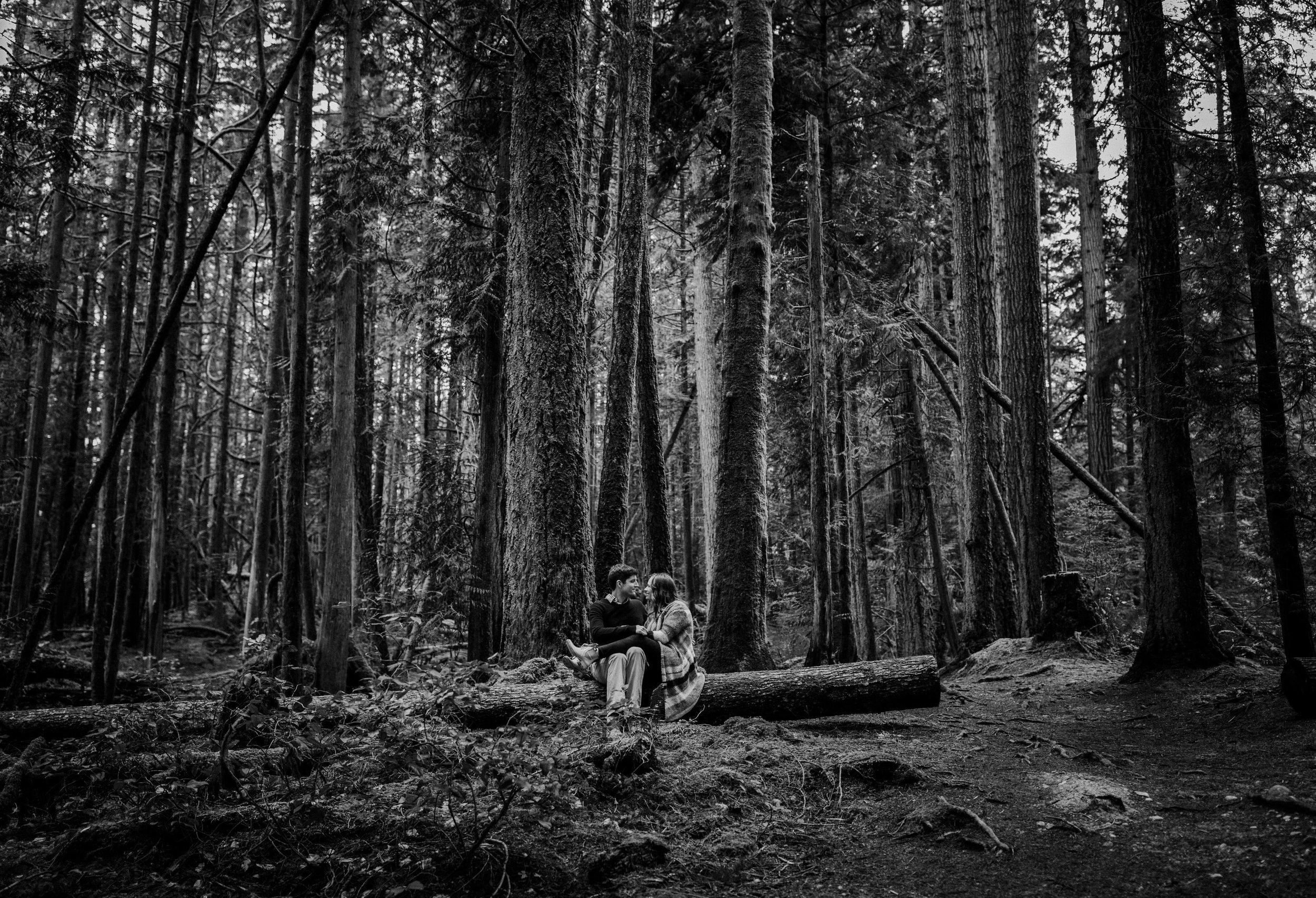 Forest Engagement Photos - Sunshine Coast BC Engagement Photos -  Sunshine Coast Wedding Photographer - Vancouver Wedding Photographer - Jennifer Picard413.JPG