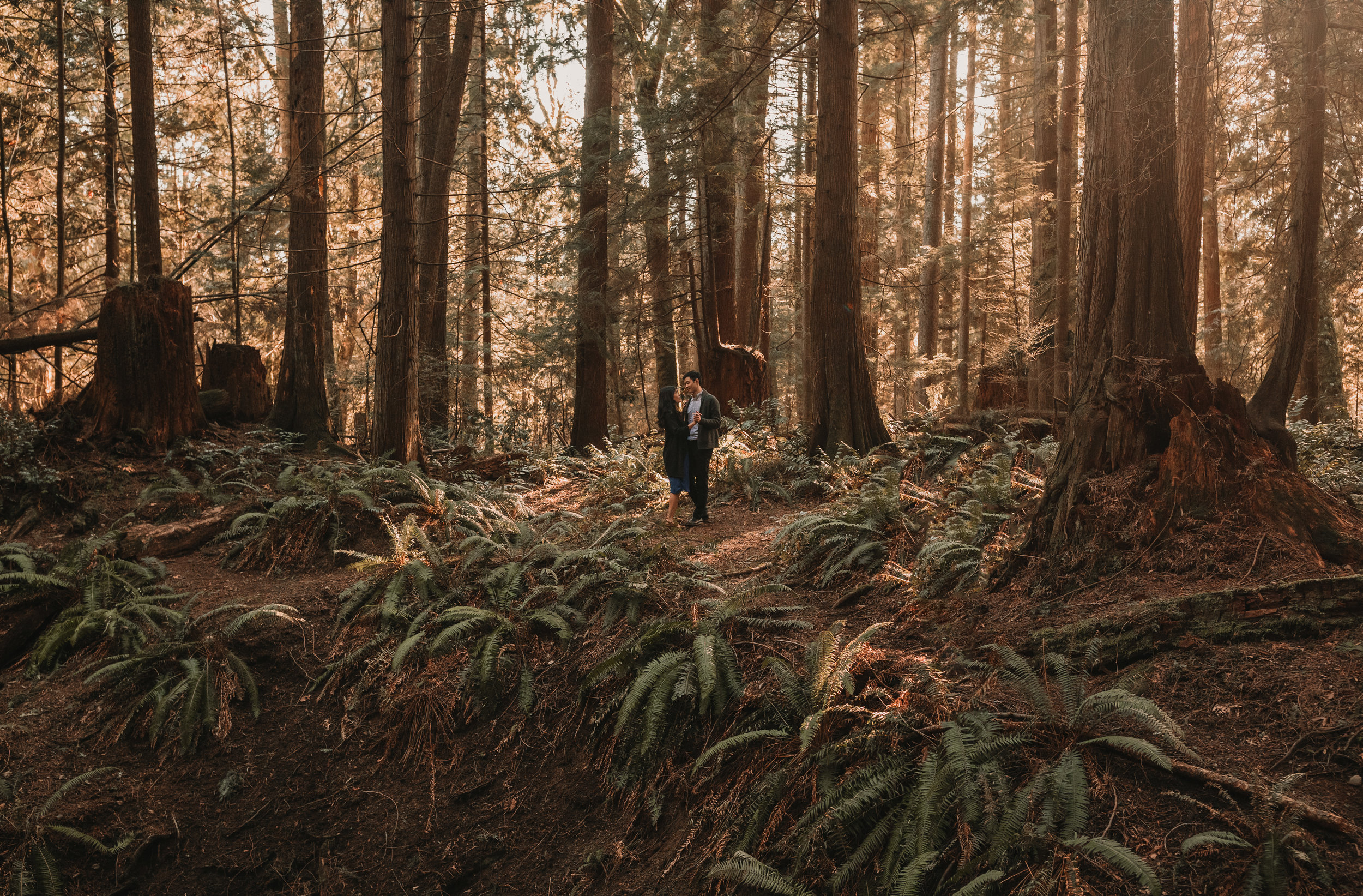 Sunshine Coast Forest Engagement Photos — Jennifer Picard Photography — Vancouver Wedding Photographer & Videographer — 397.JPG