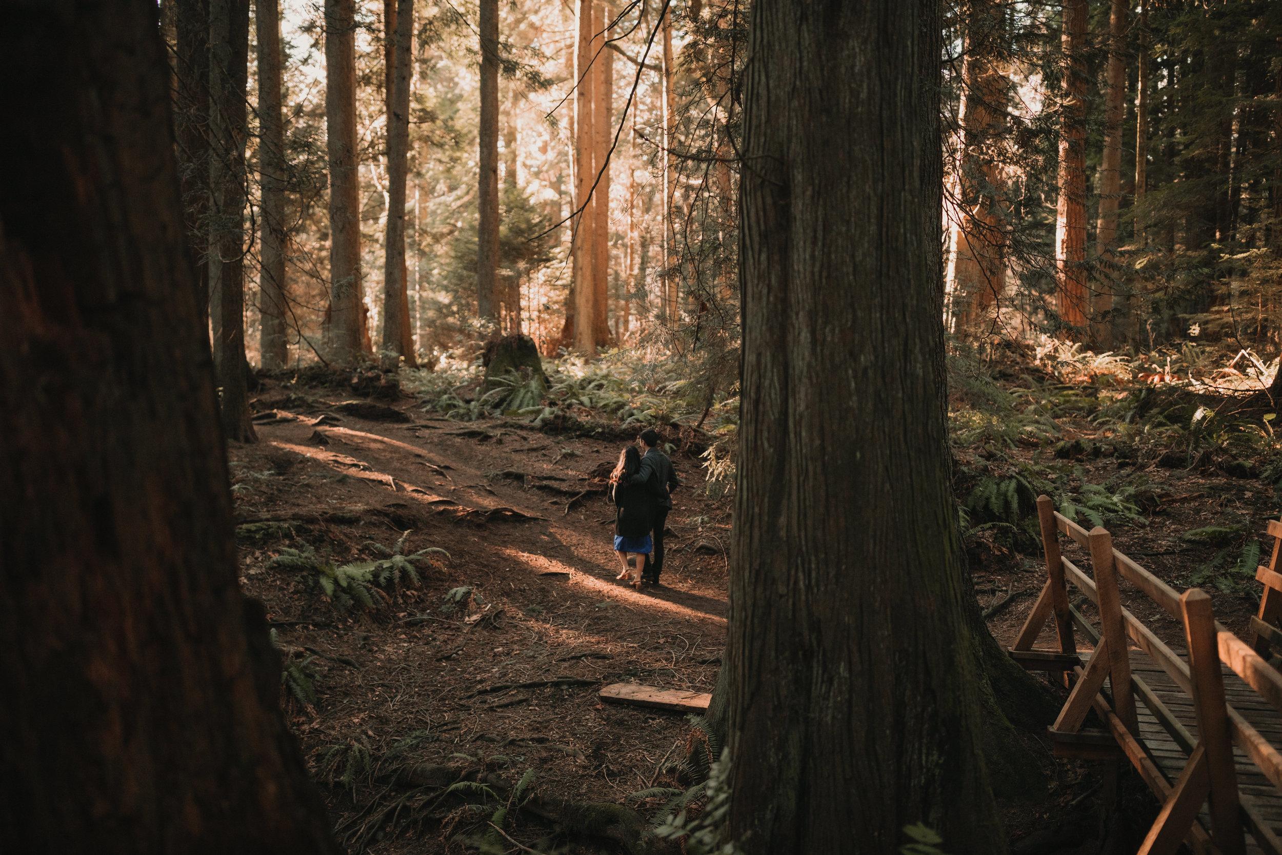 Sunshine Coast Forest Engagement Photos — Jennifer Picard Photography — Vancouver Wedding Photographer & Videographer — 438.JPG