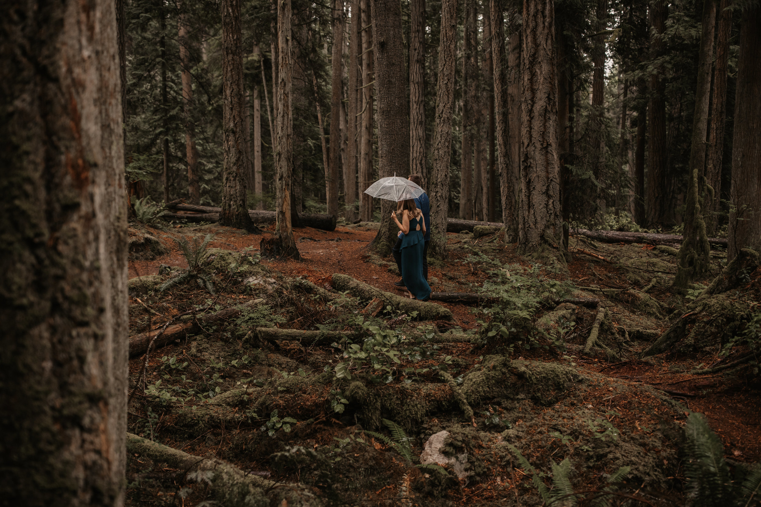 SUNSHINE COAST FOREST & BEACH ENGAGEMENT PHOTOS — Ashley & Antoine — JENNIFER PICARD PHOTOGRAPHY202.JPG
