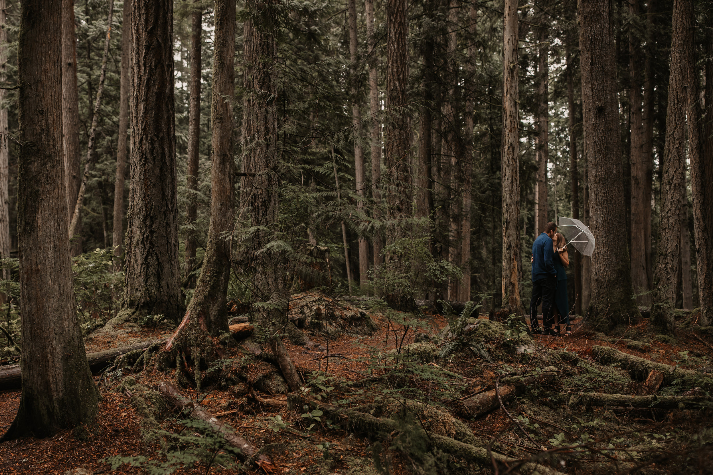 SUNSHINE COAST FOREST & BEACH ENGAGEMENT PHOTOS — Ashley & Antoine — JENNIFER PICARD PHOTOGRAPHY205.JPG