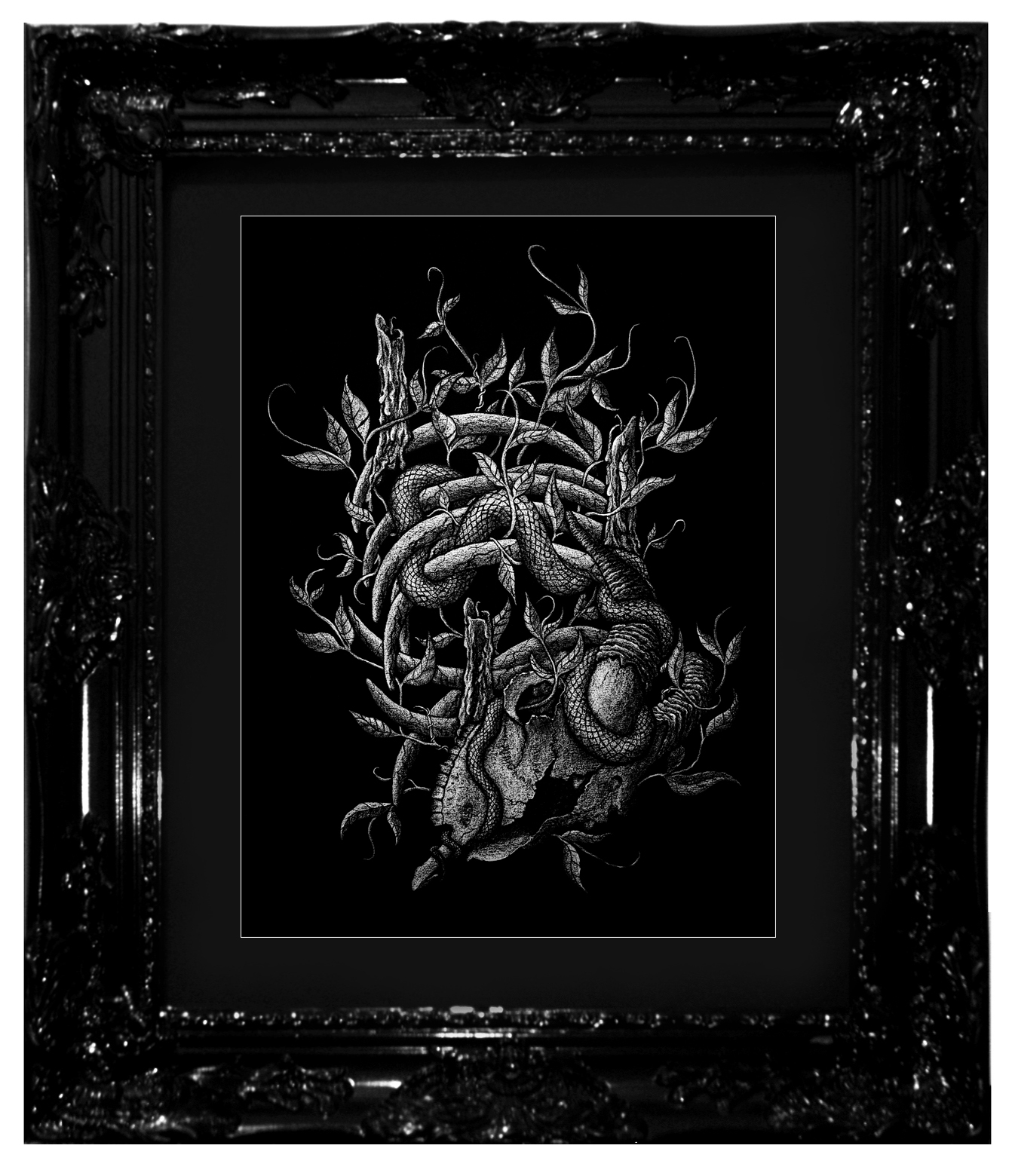 """The Blind-Worm's Sting"", 2017 Ashes, chalk-lead and ink on black cotton-rag paper 16x20"", 18x24"" framed Contact Last Rites Gallery for purchasing information"