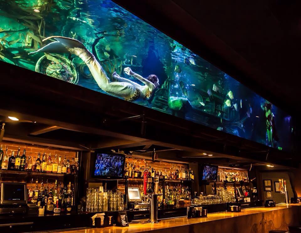 Bar Entertainment (c) Terri Brindisi; see some of our mermaids perform at Dive Bar Sacramento!
