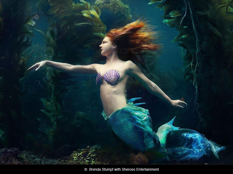 Catalina Mermaid 2 by Brenda Stumpf.jpeg