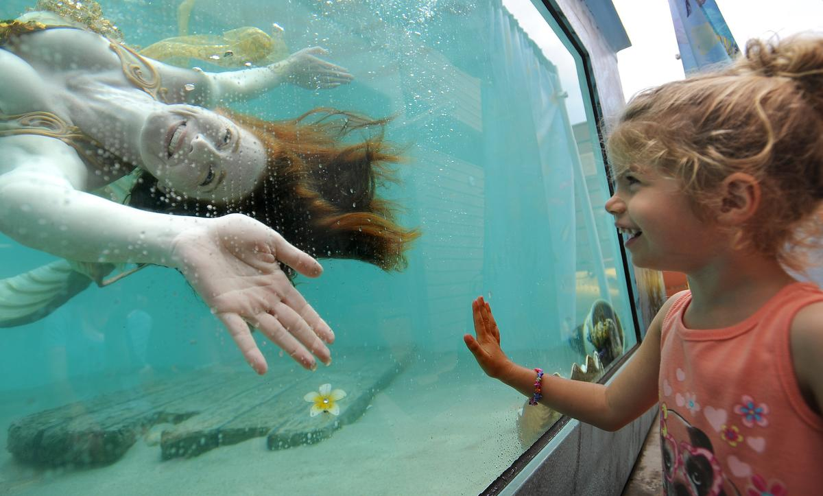 Catalina the mermaid meets Emilia Marcigliano, 3, as she frolics in the fish tank at the Ocean Institute 31st annual Tall Ships Festival on Saturday.