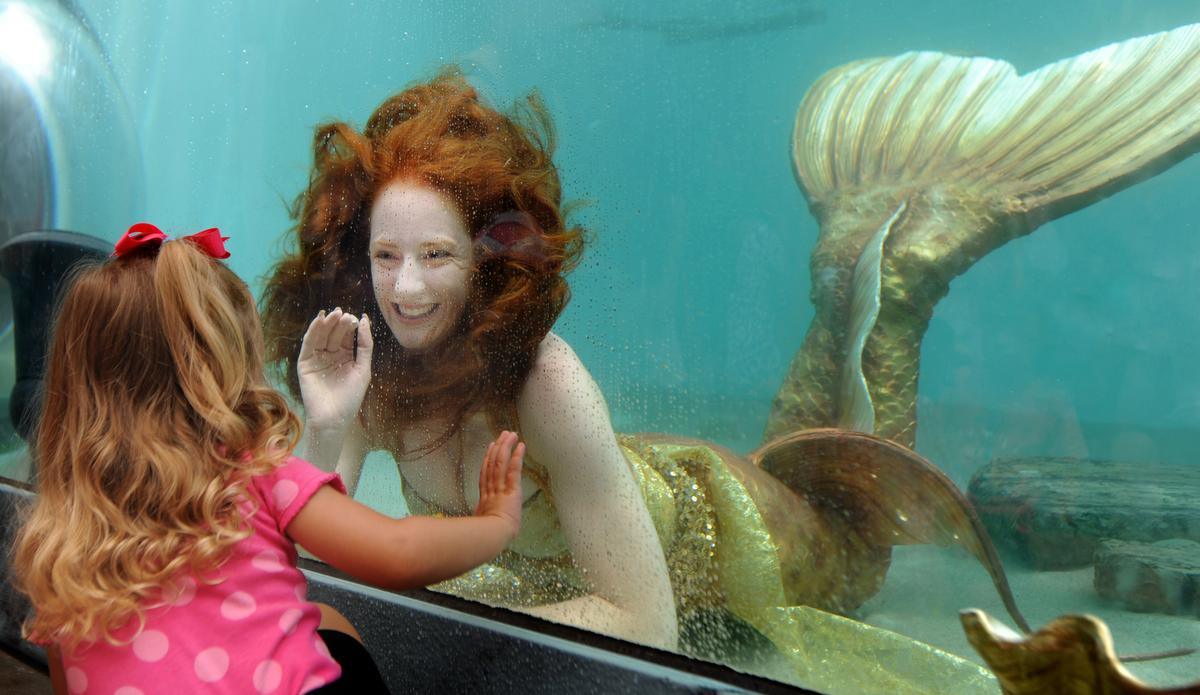 Catalina the mermaid greets visitors as she swims around in a fish tank at the Ocean Institute 31st annual Tall Ships Festival on Saturday. ///ADDITIONAL INFO: - Photo by MINDY SCHAUER, THE ORANGE COUNTY REGISTER - shot: 0909150917.dpn.tallshipsThe Ocean Institute 31st annual Tall Ships Festival. The theme is myths, legends and lore of the sea. Mermaids will be visiting the Institute in the large tank. Event also includes interactive living-history encampments, blacksmiths, scrimshaw artists, knot tiers and more.