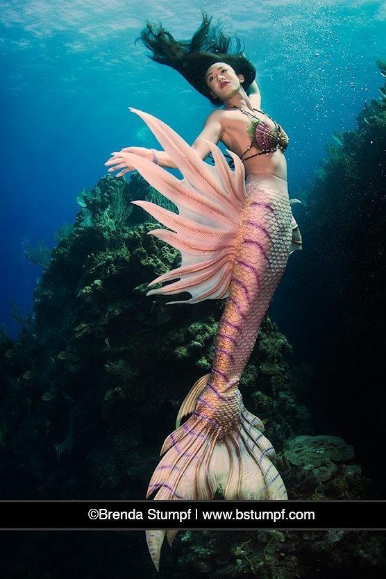 Asian Mermaid Under Water in the Ocean