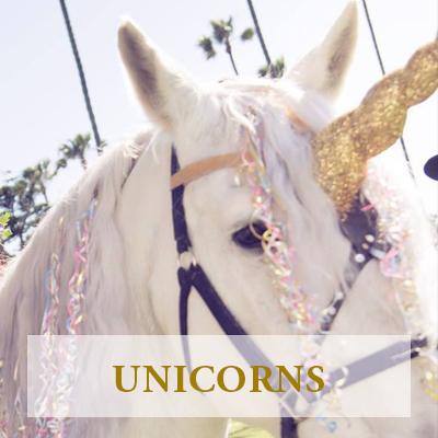 Unicorn Party Ventura County