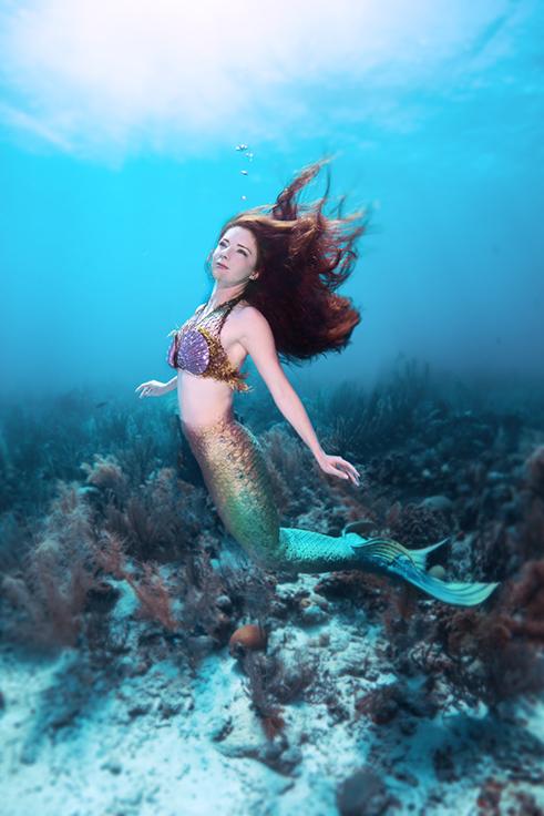 Mermaid Catalina