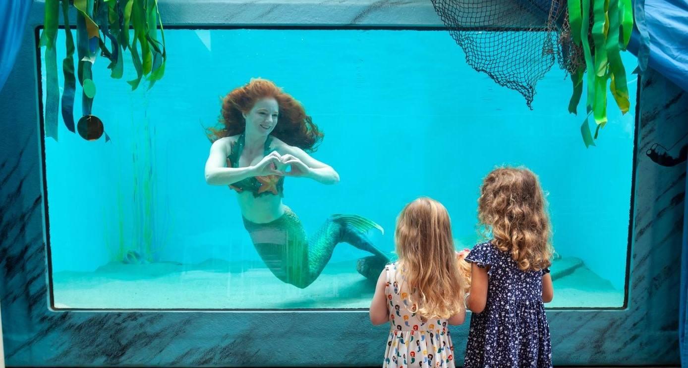 ocean institute catalina mermaid with kids.jpg