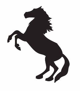 ponyboy.PNG