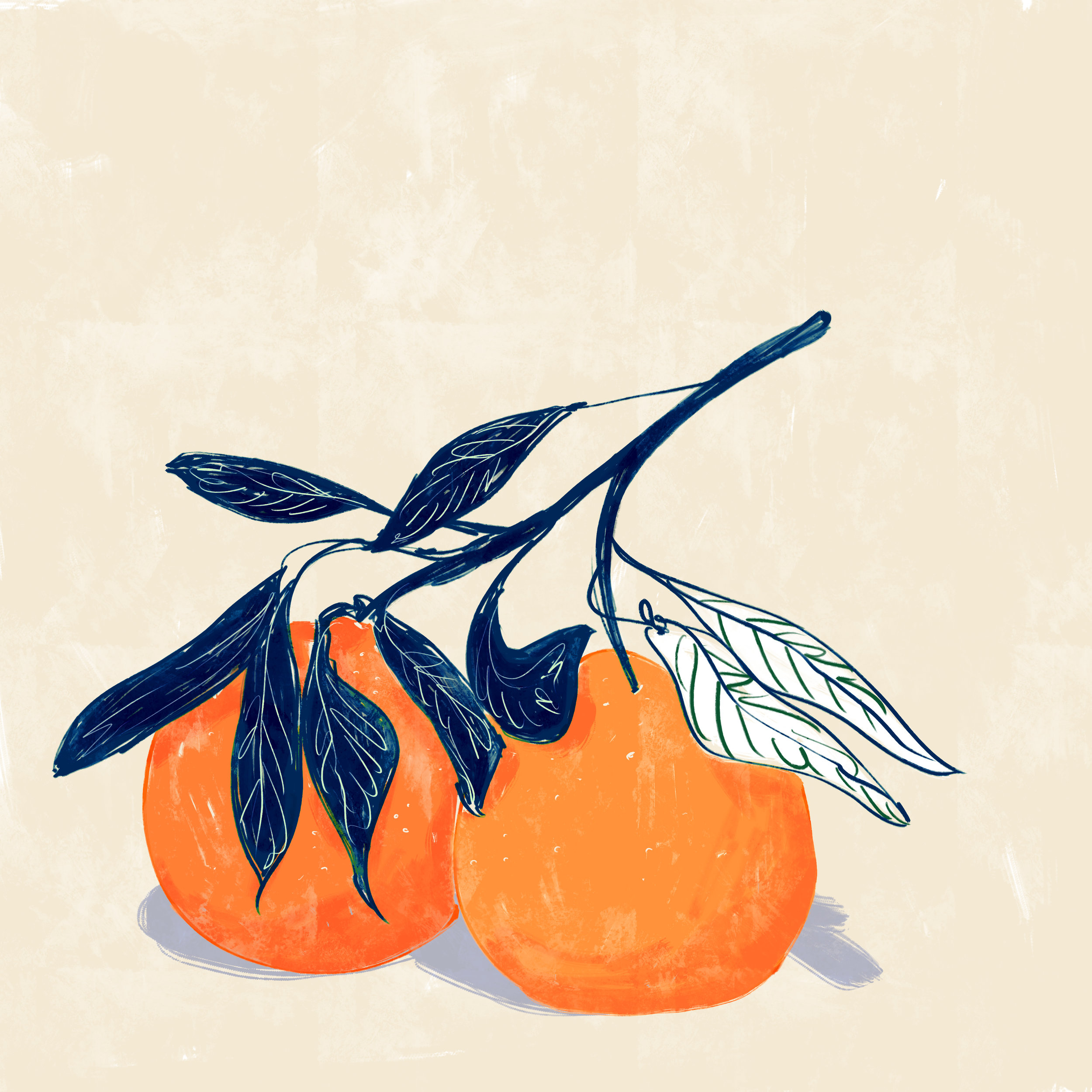 oranges_amber day.jpg