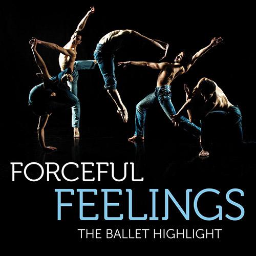 forceful-feelings_500x500_20.jpg