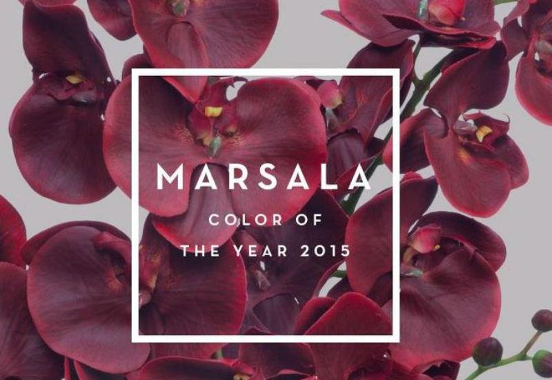 Marsala-Pantone-Color-2015.jpg