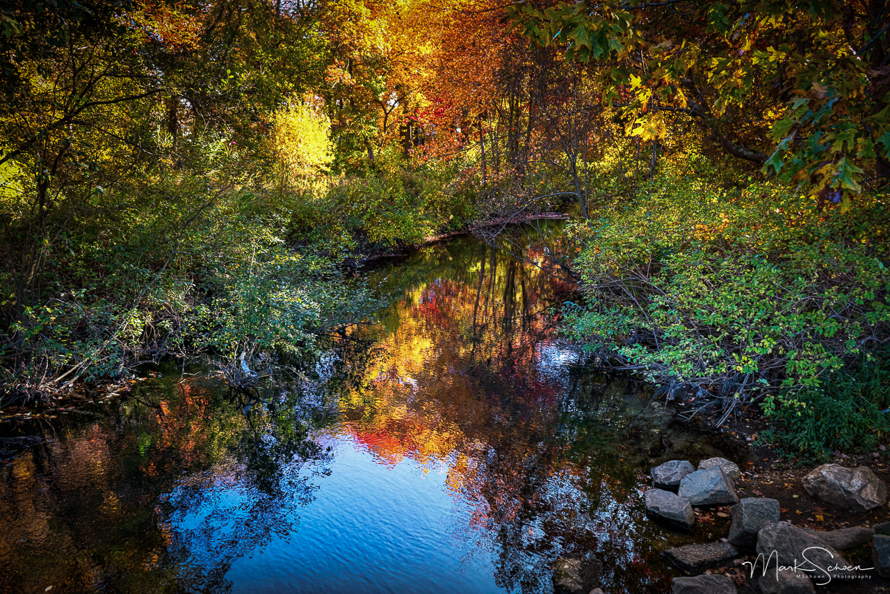 2015-10-26_08840-Edit.jpg