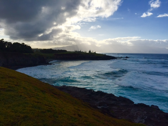 One of the many ocean views along the Hana Highway.