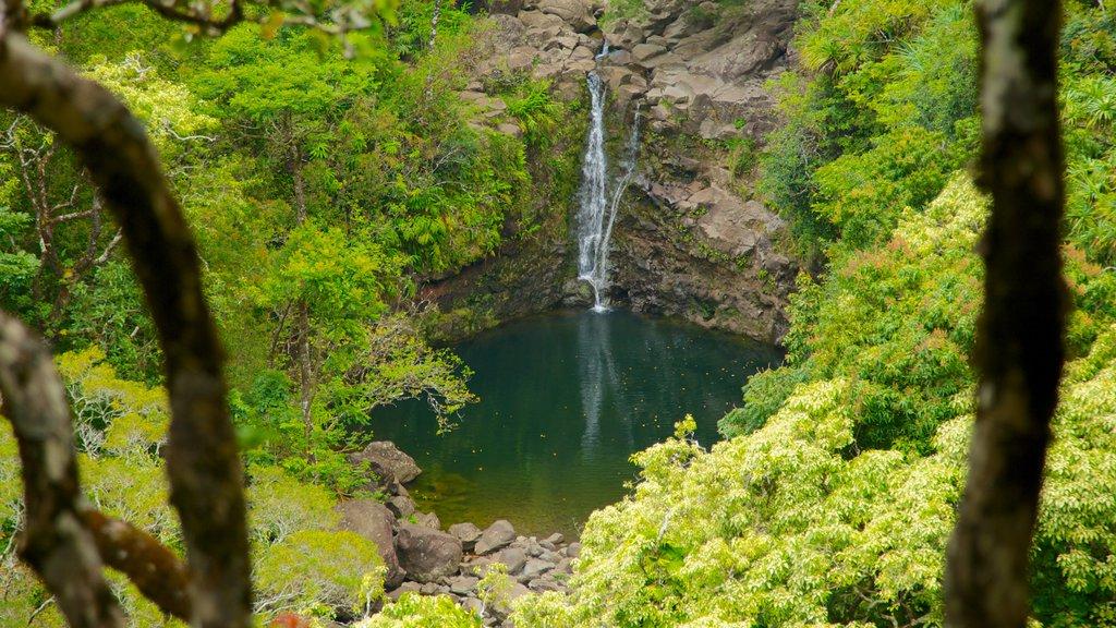 Garden of Eden Waterfall