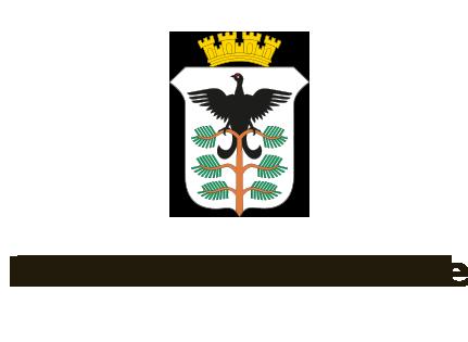 Hamarkommune_logo.png