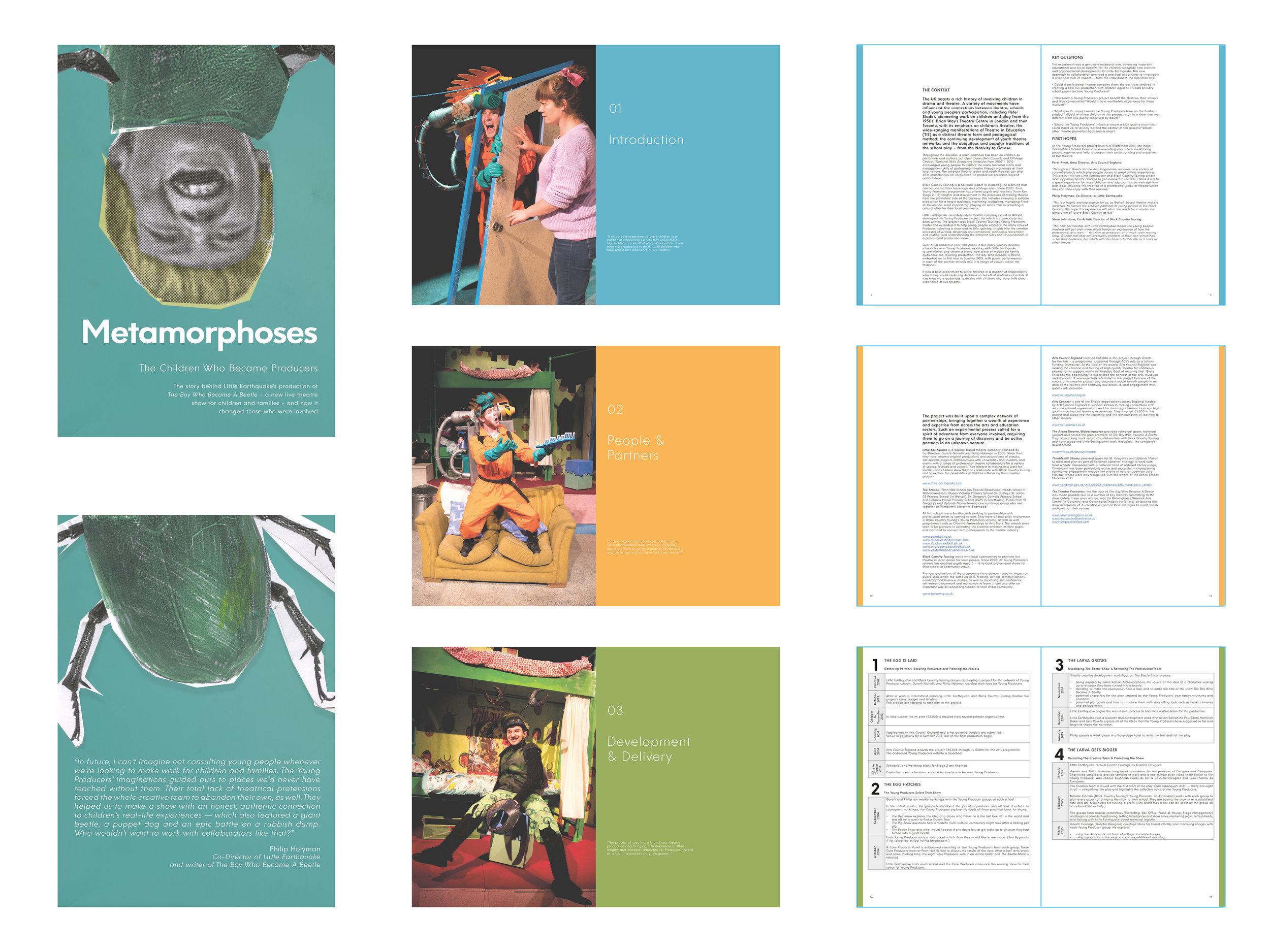 Metamorphoses - The Boy Who Became A Beetle case study