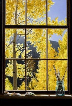 "Autumn Colors 34""Hx24""W"