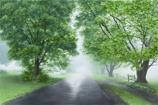 Early May Fog