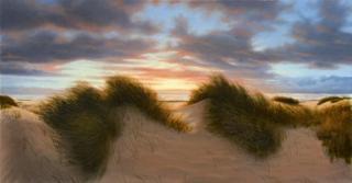 "Wind In The Dunes 25""Hx48""W"