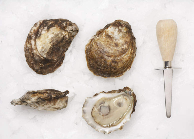 blue-point-oysters.jpg