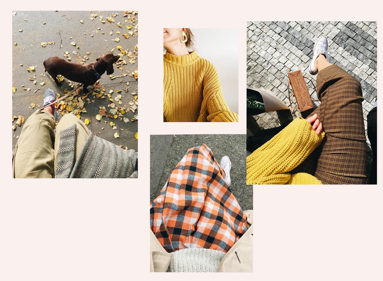 fall colors copy.jpg